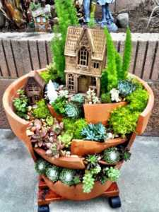 6 plants that will perfectly fit into a little dish garden - beautiful dish garden