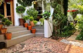 Basic and simple tips to organize your dream garden - flower pots