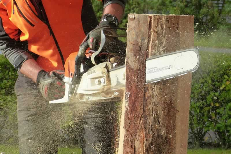 Factors to Consider in Buying the Right Chainsaw Chain - cutting log