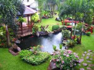 Why landscaping matters - backyard with pond
