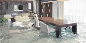 5 Tips For Hiring a Water Damage Professional