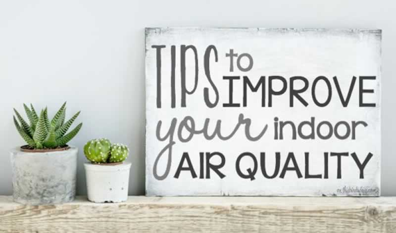 Easy Tips to Improve Indoor Air Quality
