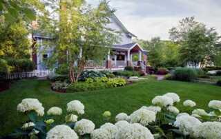 How Do Using Native Plants Make Landscape Maintenance Easier
