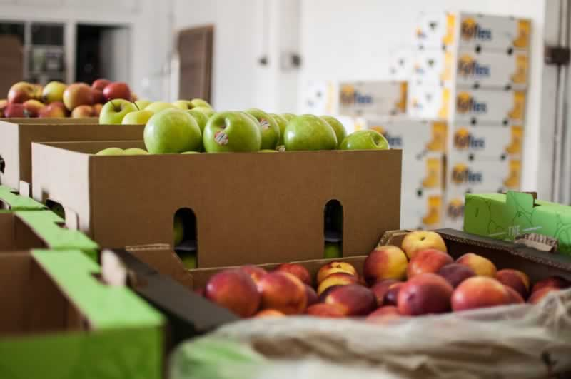 How a Fruit wholesale supplier delivery can benefit you