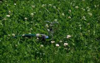 How to Recognize, Prevent, and Fix a Damaged Irrigation System