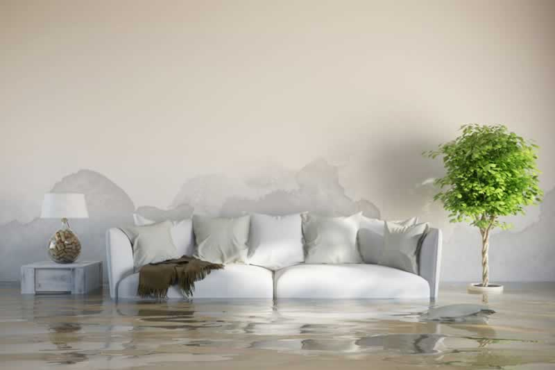 How to Save Your Home after a Flooding With Water Removal