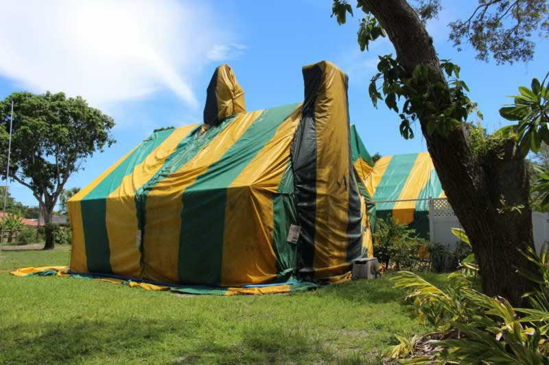 Why Did I Ignore The Winged Termites I Found In My Home Two Years Ago - fumigation tent