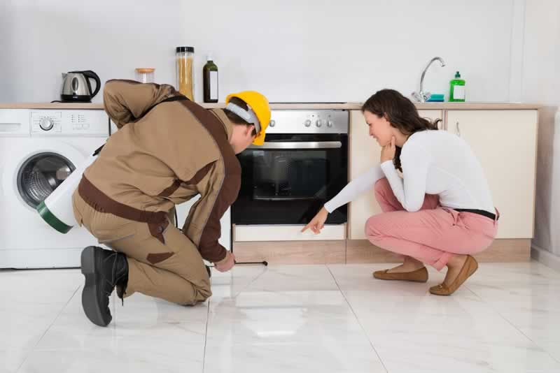 Why you need to hire a Pest Control professional