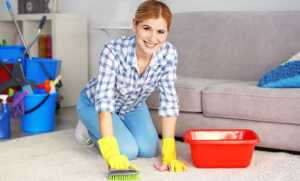 Cleaning Tips How to Naturally Deep Clean Your Carpet