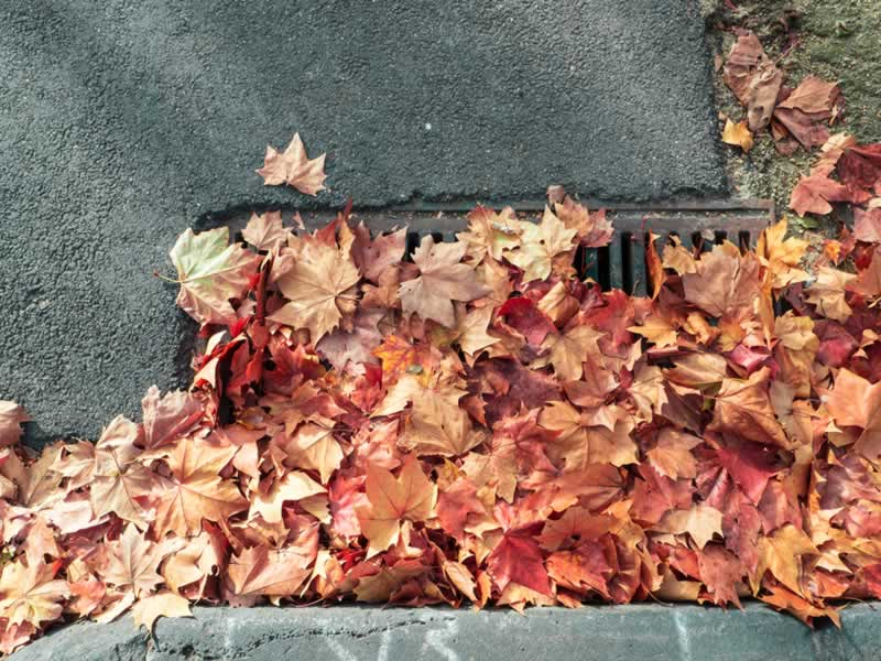 Prevent a Blocked Stormwater Drain