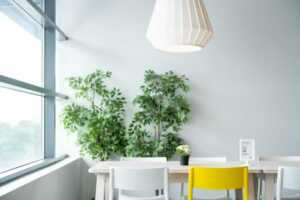 The Top Tips to Improve Home Air Quality