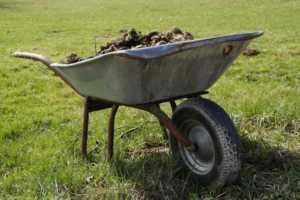 Buying Guide for Powered Wheelbarrows - number of tires