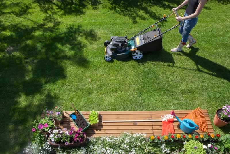 How to mow a lawn professionally - mowing