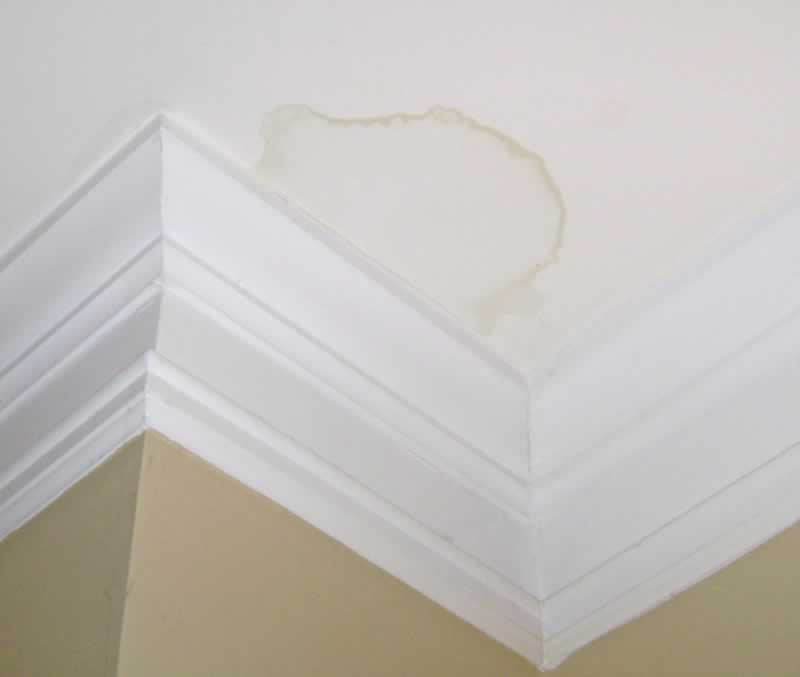 Signs your home needs a new roof - ceiling leak