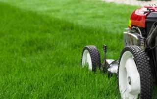 11 tips for a beautiful lawn for every season - mowing