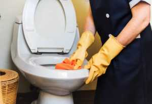5 Key Qualities of a Good Home Cleaning Service - cleaning the toilet