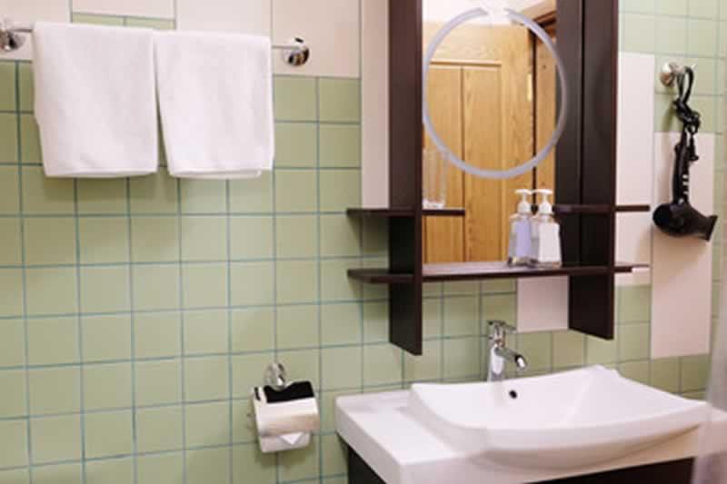 Bathroom Renovations To DIY or Not - bathroom interior