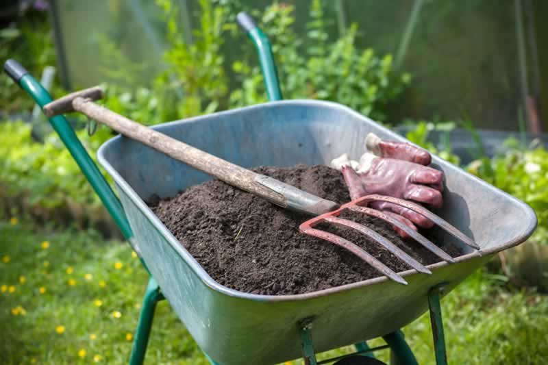 Six reasons for using worm castings in your garden - wheelbarrow