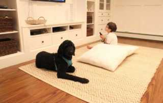 4 ways to soundproof a wooden floor - carpet
