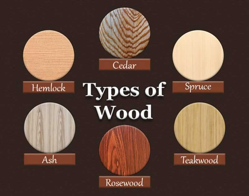 Diffe Types Of Wood And Their Uses