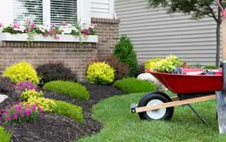 Fix home before sell it - garden