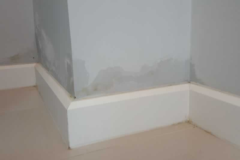How to Treat Damp in Your Home