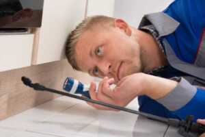 Pest control mistakes - inspection