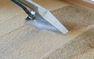 The Benefits of Hiring a Professional Carpet Cleaning Company