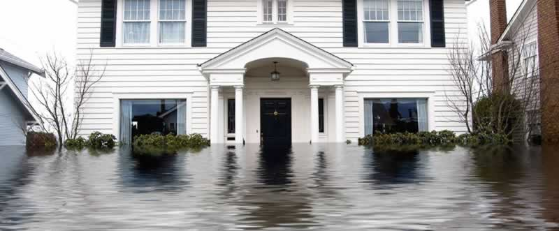 Why You Need To Call A Disaster Restoration Company