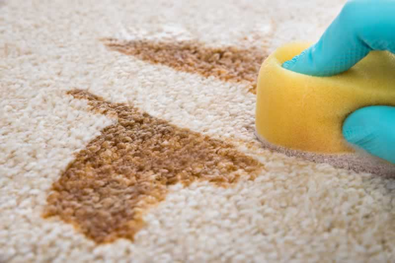 Selecting the Right Kid-Friendly Carpet for Your Home