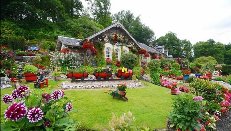 Tips To Improve Your Garden - amazing garden