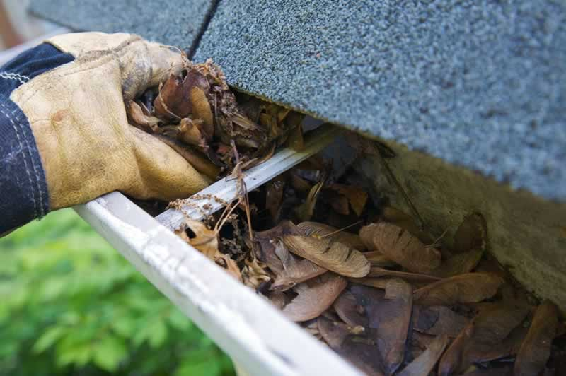 Why Cleaning Your Gutters Should Be At The Top Of Your To-Do List