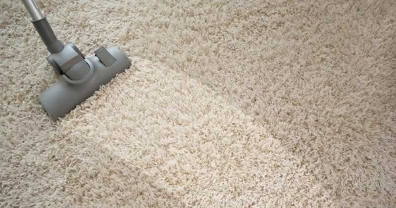 Your Health Depends on Your Carpet's Condition