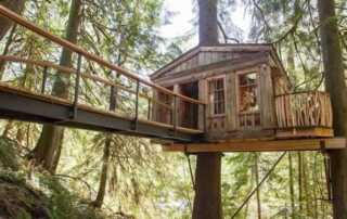 DIY Tips for Building Your Own Backyard Treehouse