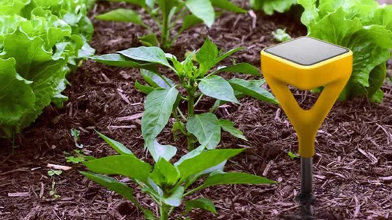 High Tech Gadgets You Must Install In Your Garden