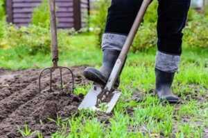 How do I prepare my garden for planting