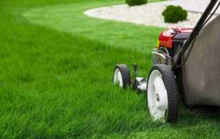 How to make your grass shimmer this summer - mowing
