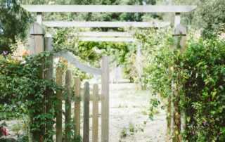 Inspiring Gardening Trends for your Front yard, Backyard and Patio - backyard