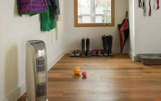 Let Clean Air Settle in your Home for Good - air purifier