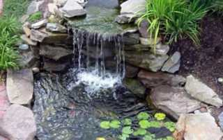 Must have equipment for the backyard pond - pond