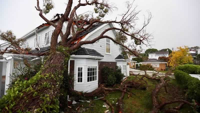 What to Do If a Storm has Damaged your Home