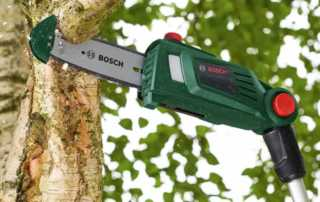 Types of Pole Saws and Tips to Maintain Pole Saw - cutting