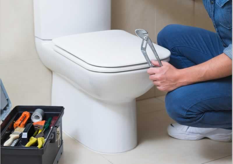 Choosing a Professional for Toilet Repair