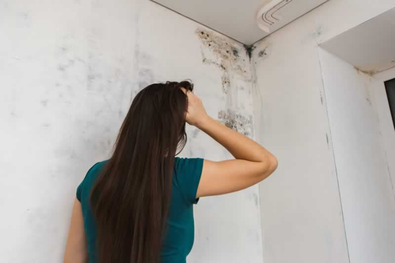 5 ways to find mold in your home - mold on the wall
