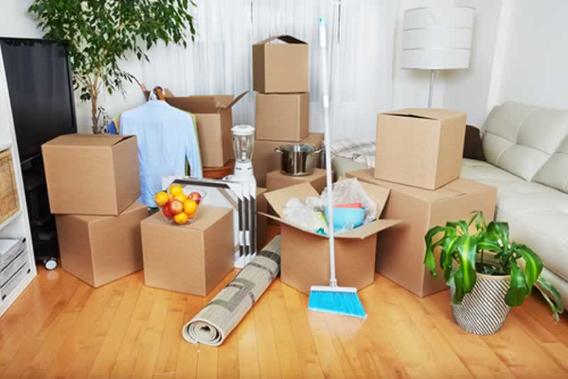 Moving Out Cleaning Checklist - boxes