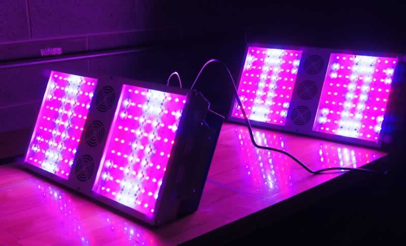 Spider Farmer LED Grow Light Reviews - LED light