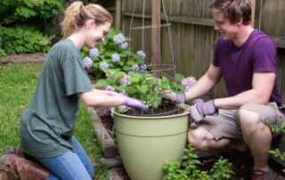 7 Common Mistakes Herb Gardeners Make
