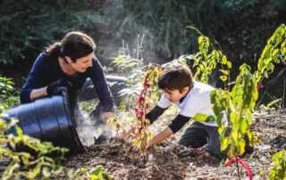 7 Common Mistakes Herb Gardeners Make - garden invasion