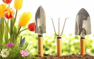 8 Must-Have Tools That Will Make Your Gardening Experience Easier and More Enjoyable - tools