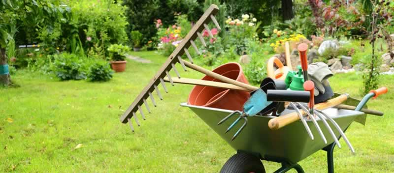 8 Must-Have Tools That Will Make Your Gardening Experience Easier and More Enjoyable